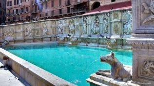 Siena: Gaia Fountain