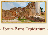 Roman Forum Baths: T