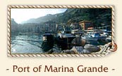 Sorrentine Peninsula : the fishing village of Marina Grande Port - Sorrento, Italy