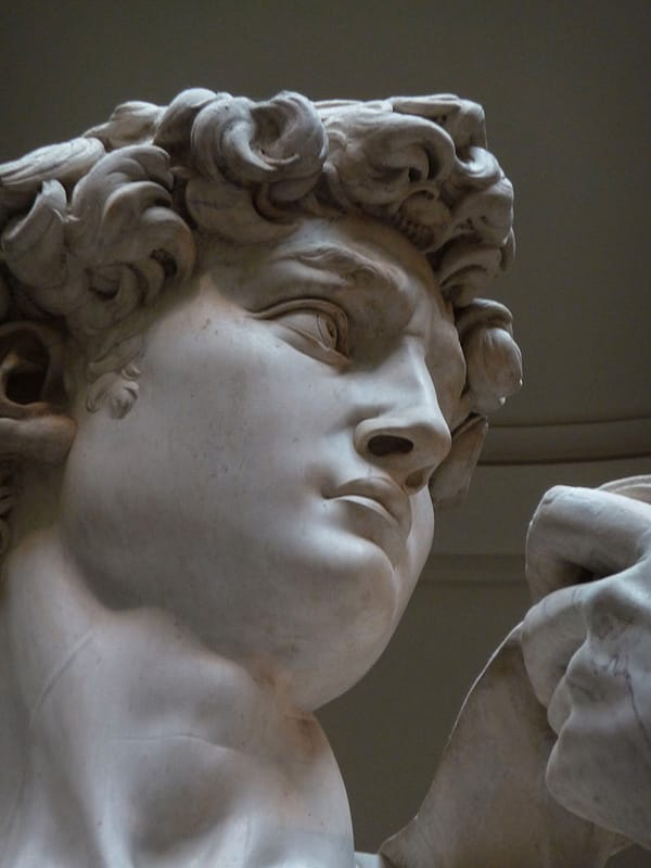 """michelangelo s david a masterpiece of The subject of david was a constant source of inspiration throughout the renaissance the ultimate masterpiece of michelangelo was his """"david statue'' in his mid to late twenties, fully developed in his masculinity and poised just before the throwing of the stone."""